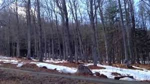tour my backyard maple syrup sugaring operation in vermont youtube