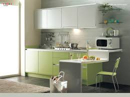 Green Color Kitchen Cabinets Chic Small Modern Kitchen With Brown Color Wooden Kitchen Cabinets