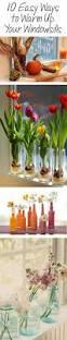 kitchen ideas kitchen window plant shelf indoor window herb