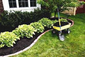 garden landscaping cheap ideas and edging decorative modern garden