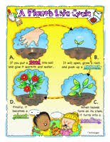 plants worksheets edhelper com