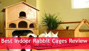 Rabbit Hutches For Indoors Best Indoor Rabbit Cages Review Rabbit Hutches