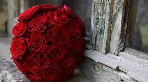 wallpaper flower red rose red roses flowers pictures hd wallpaper of flower hdwallpaper2013 com