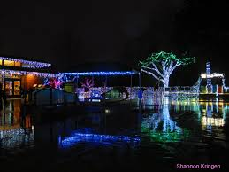 Detroit Zoo Wild Lights 10 Best Christmas Light Displays In Washington 2016