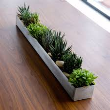 Window Sill Herb Garden by Fruit Trough Accessories Gus Modern Window Sill By Kitchen