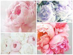 Wedding Flowers Queenstown Queenstown Wedding Florals By The Flower Room Http Www