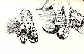 international sketchcrawl nasty bird feet sketch the museum of