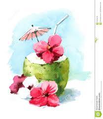 mixed drink clipart watercolor cocktail drink in coconut shell hand painted beach