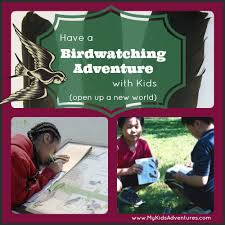 Backyard Bird Watching How To Have A Backyard Birdwatching Adventure With Your Kids My
