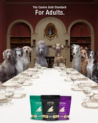Dogs At Dinner Table Gold Dog Food Fromm Family Foods