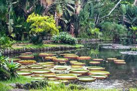 World Botanical Gardens Visit Another World At Kanapaha Botanical Gardens