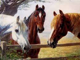 Nice Hourse Horse Horses Nice Animals Hoses Paint Painting Horse Wallpaper