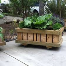 rolling planter sanctuspheres rolling raised bed flower