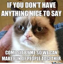 Seeking Companion Grumpy Cat Seeking Companion By Recyclebin Meme Center