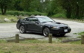 40th year anniversary mustang 2003 40th anniversary trim package