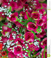 Fake Roses Fake Roses Bunch Stock Image Image 22820771