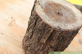tree trunk tree stump tree trunk conle pictify