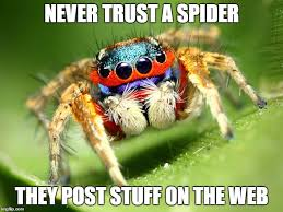 Meme Spider - jumping spider memes imgflip