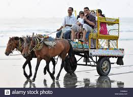 indian cart indian family on a horse cart on the beach at juhu juhu beach