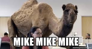 Camel Meme - geico camel meme camel best of the funny meme