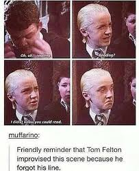Draco Memes - 15 draco memes only true potterheads will appreciate