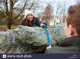 christmas tree netting stock photos u0026 christmas tree netting stock