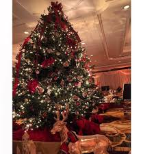 home depot fraser fir christmas tree black friday almost heavenly trees u0026 greenery 46 photos u0026 27 reviews home