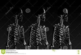 Low Key Lighting Low Poly Skeleton Portrait Side View In Low Key Lighting Stock