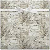 birch wrapping paper darice 1186 16 birch paper garland for craftwork 3 by