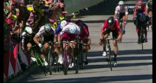australian shepherd ugly stage end of tour de france u0027s 4th stage marred by ugly and controversial
