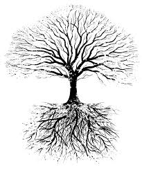 tree silhouette roots tattoos on here comes the
