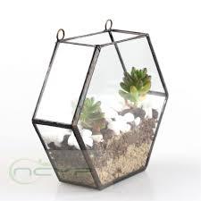 decoration terrarium succulent glass planters kit office plants
