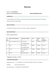 format for professional resume this is resume format goodfellowafb us