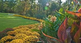 Urban Garden Woodland Hills - the 50 most beautiful college arboretums best college reviews