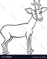 deer cartoon for coloring royalty free vector image