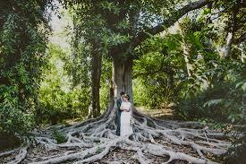 wedding photography los angeles arboretum wedding photographer carolyn ian los angeles ca