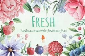 flowers and fruits fresh watercolor flowers and fruits illustrations creative market