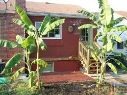 interior design for home ideas backyard creations deck box