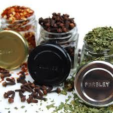 Spice Rack Empty Jars Amazon Com Gneiss Spice Everything Spice Kit 24 Magnetic Jars