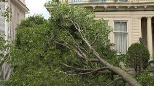 storm damage wnep com