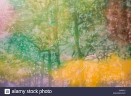 abstract painting art trees strokes with different color