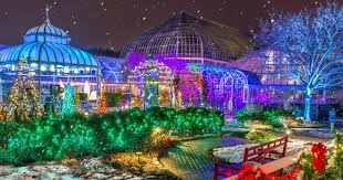 Outdoor Christmas Tree Made Of Lights by Winter Flower Show And Light Garden Holiday Magic Phipps