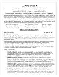 business analyst cover letter professional business analyst cover