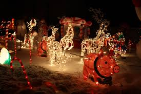 fort collins christmas lights fort collins limo christmas light tours fort collins limo