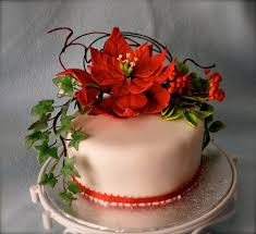 Christmas Cake Decorations Flowers by 13 Best Poinsettia Cake Images On Pinterest Christmas Cakes
