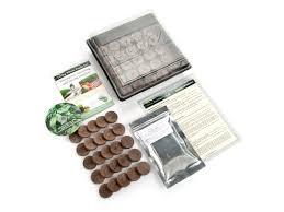 culinary indoor herb garden starter kit grow basil dill
