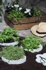 54 best herb garden layout images on pinterest herbs garden