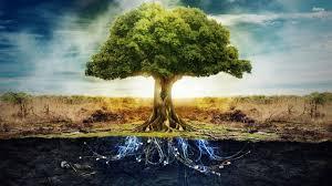we are unity cosmic tree of life pamela hope deluca price