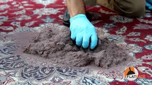 Area Rug Cleaning Tips The Rug Cleaning Process