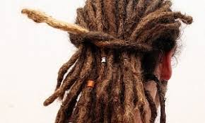 stages of dreadlocks pictures dreadlocks the stages of their life